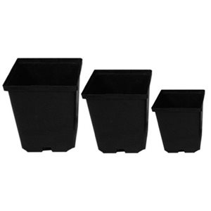 DEEP SQUARE POT 4.5'' (441)