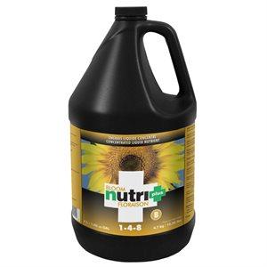 NUTRI+ NUTRIENT BLOOM B 4L (1)