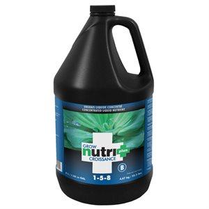 NUTRI+ ENGRAIS CROISSANCE B 4 L (1)
