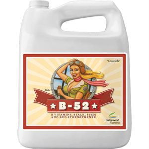 ADVANCED NUTRIENTS B-52 4L (1)
