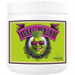 ADVANCED NUTRIENTS BIG BUD POWDER 130G (1)