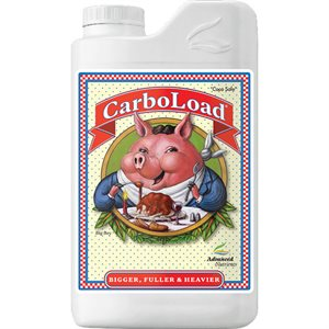 ADVANCED NUTRIENTS CARBOLOAD LIQUID 1L (1)